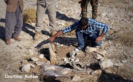 Mass graves found near Sinjar in Nov.2016