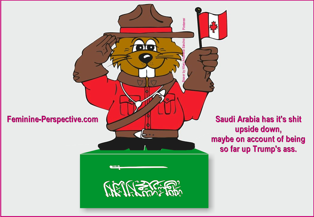 Canada is right and Saudi is wrong to severely restrict freedoms of expression, association & assembly.