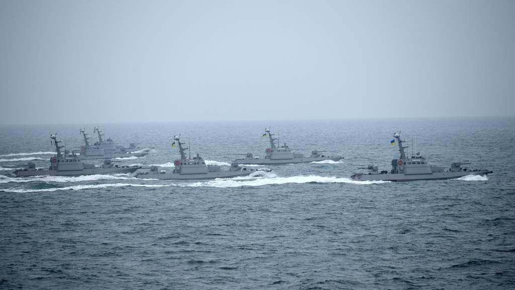Project 58155 small armoured artillery boats