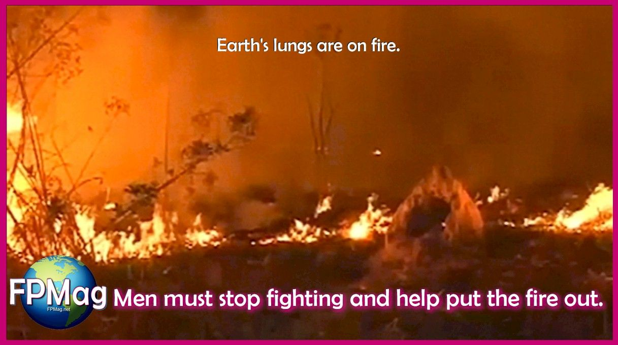 Earth's lungs are on fire.